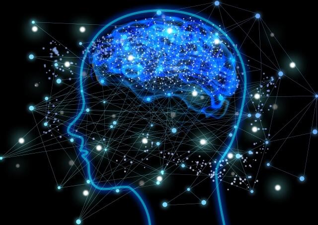 脳内で情報処理をしている